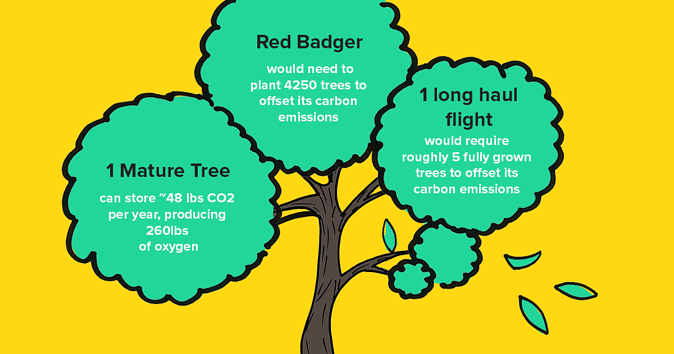 Illustration of a tree with each bush containing a fact about Red Badgers carbon emissions.