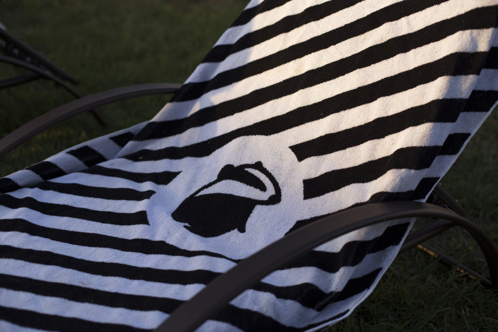 Another example of branding was the Red badger towel featuring our badger logo central to black and white horizontal stipes