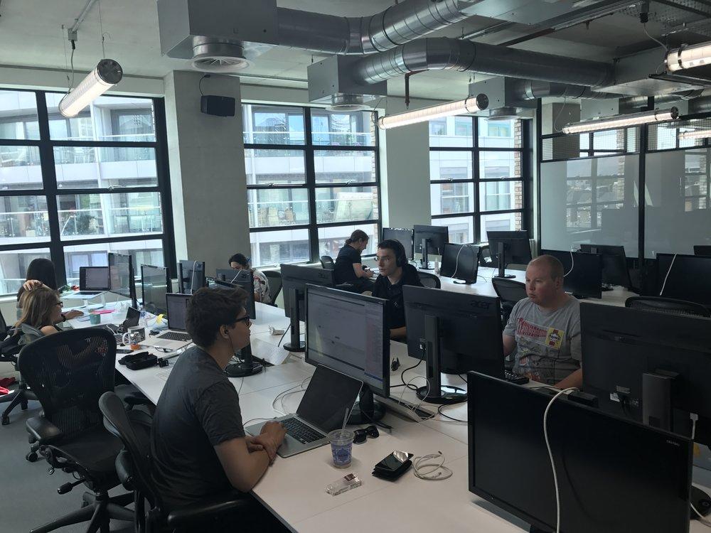 Working badgers